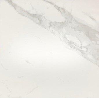 CarraraMatte6060224X24