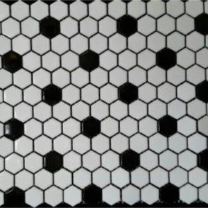 white blackpointpolishhexagon1x1