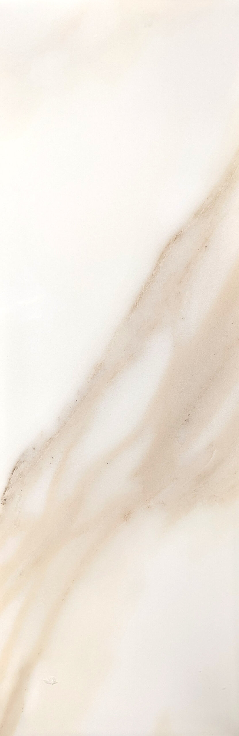 calacatta gloss wall scaled