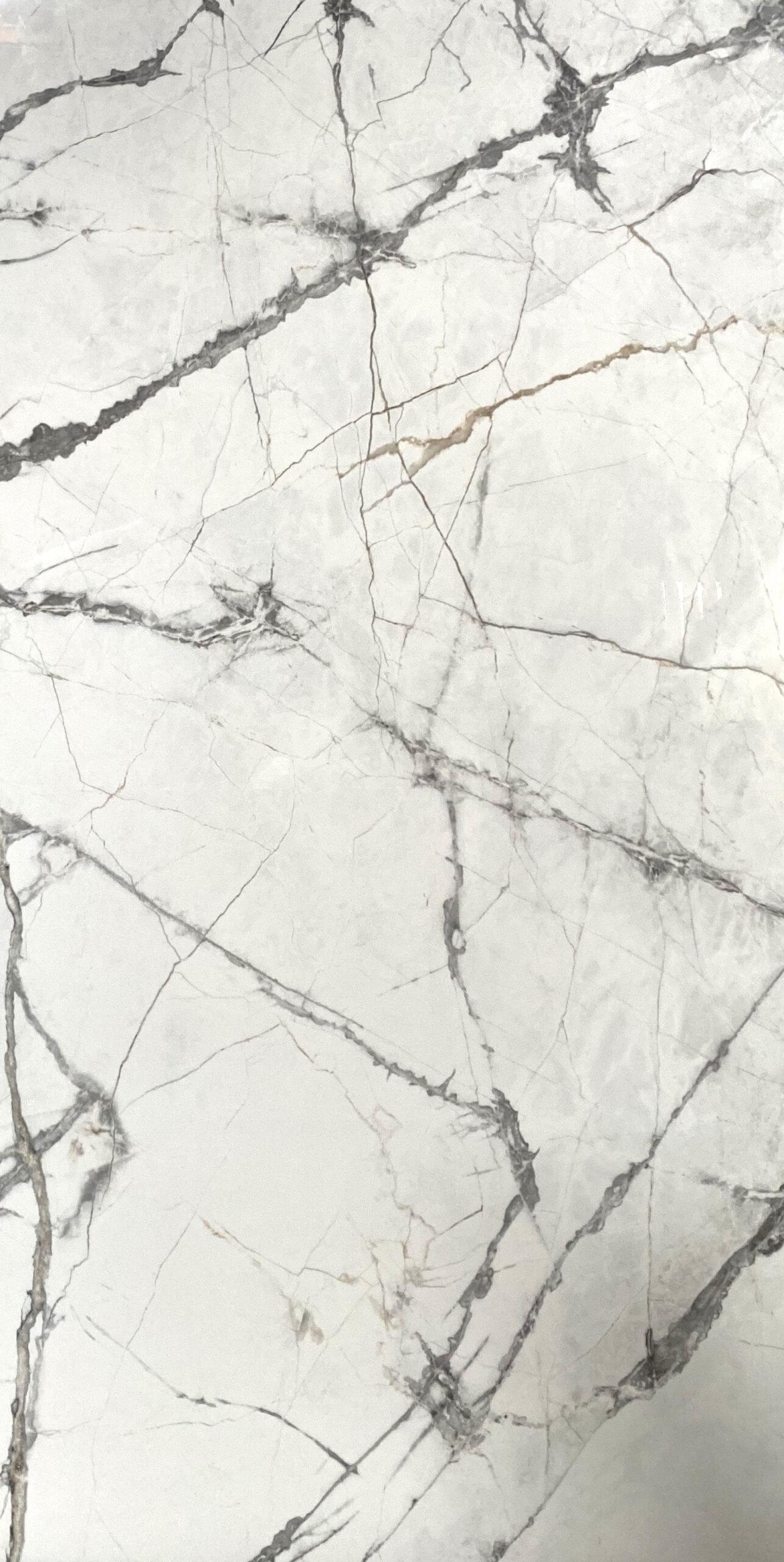 olympia white 24x48 polish scaled