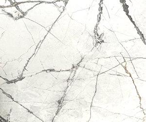 olympia white 24x48 polish scaled 1