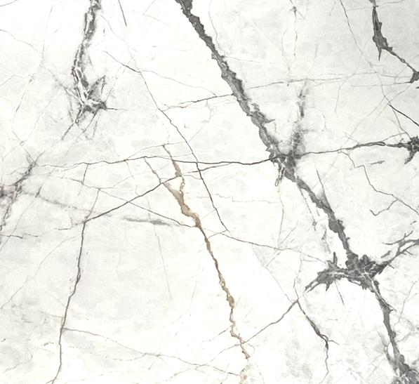 olympia white 24x48 polish scaled 2